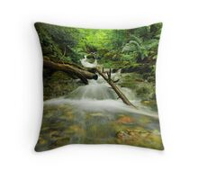 Bassenthwaite Bound Throw Pillow