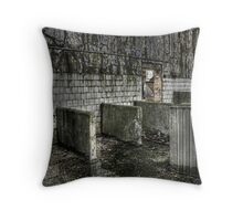 Laundry Rooms Throw Pillow