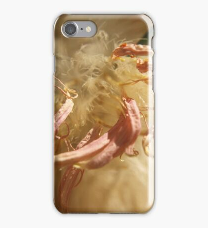 The Secret Life of a Flower iPhone Case/Skin