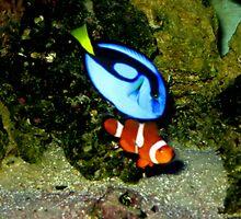 Nemo and Dory by Brockfluharty