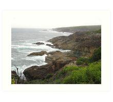 Tathra Coastline, NSW Australia Art Print