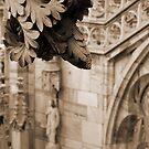Il Duomo by kuntaldaftary