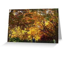 New Jersey trees in October Greeting Card