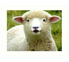 Oooh! La La... - Baby Lamb - Sheep - NZ Art Print