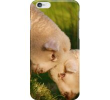 We Know We're Cute & Cuddly...!- Lambs - NZ iPhone Case/Skin