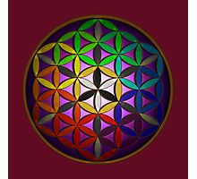 flower of life (spectral) Photographic Print