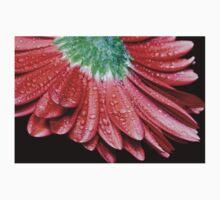Red Gerbera Flower One Piece - Long Sleeve