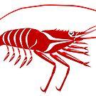 Shrimp by Mark Gauti