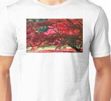 Westonbirt, Autumn Leaves Unisex T-Shirt