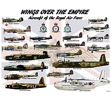 Wings over the Empire  Photographic Print