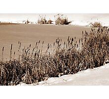 Sepia Frozen Lake Photographic Print