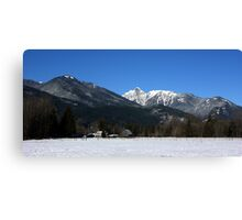 Cascade Mountain Landscape Four Canvas Print