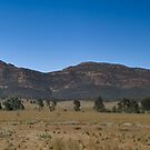 Wilpena Pound by cowwws