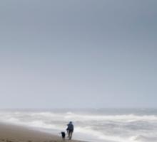 Beach Waves Woman Dog Sticker