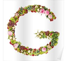 Capital Letter G Part of a set of letters, Numbers and symbols Poster