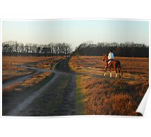 Riding on the December heath Poster