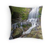 Tristania Falls, Dorrigo, NSW, Australia Throw Pillow