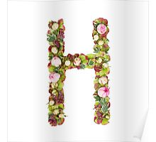 Capital Letter H Part of a set of letters, Numbers and symbols Poster