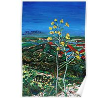 The Yellows In the Landscapes of the Gilbo'aa , Israel  Poster