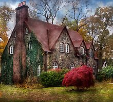 My little mansion by Mike  Savad