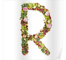 Capital Letter R Part of a set of letters, Numbers and symbols Poster