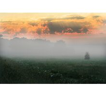 Foggy Grassland Photographic Print