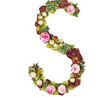 Capital Letter S Part of a set of letters, Numbers and symbols by PhotoStock-Isra