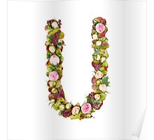 Capital Letter U Part of a set of letters, Numbers and symbols Poster