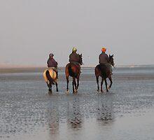 Trotting on the beach by Deirdre Banda