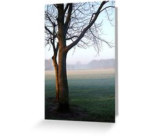 A Misty Morning at the Oval. Greeting Card