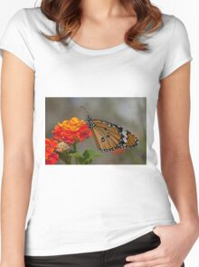 Plain Tiger AKA African Monarch Butterfly Women's Fitted Scoop T-Shirt