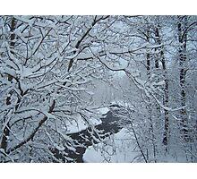 Through The Snow Photographic Print