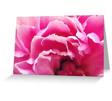 Pink. Greeting Card