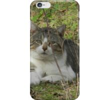 You're Scaring the BIRDS! - View Larger iPhone Case/Skin