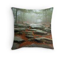 Stone Mountain Throw Pillow
