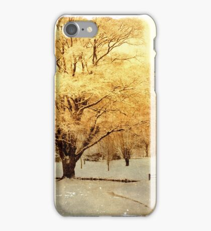 Two-Horse Open Sleigh  iPhone Case/Skin