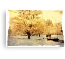 Two-Horse Open Sleigh  Canvas Print