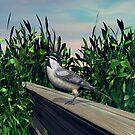 Chickadee by Walter Colvin