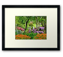The Best Garden In NZ - Maple Glen - Southland Framed Print