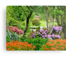 The Best Garden In NZ - Maple Glen - Southland Metal Print