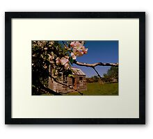 The lonely Apple Tree! - Old House - NZ - Southalnd Framed Print