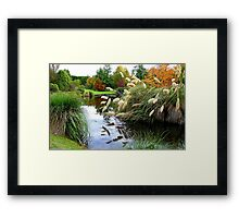 Nature's Autumn Painting Reflected - New Zealand Framed Print