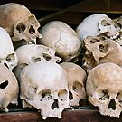 Horror in Cambodia by Maximus