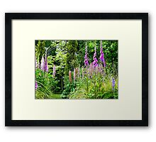 Our Tranquility!  - Southland Garden - NZ Framed Print