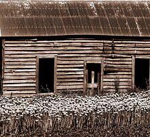 'Pre-loved Abode' by Lisa Wilson