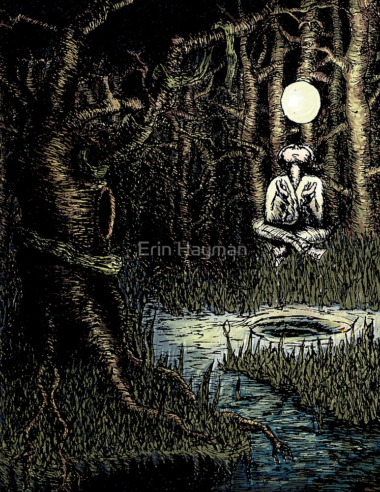 Lady of the Shallows by Erin Hayman