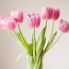 Soft Tulips by Colleen Farrell