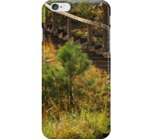"""""""Wooden Stairs""""....Cascade, CO iPhone Case/Skin"""