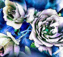 My flower by ranjini