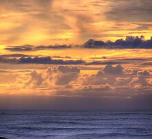 A Sunset on the Pacific by Brian Puhl IPA